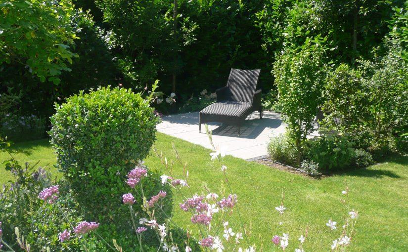 Sonnenplatz, Sichtschutz aus Büschen