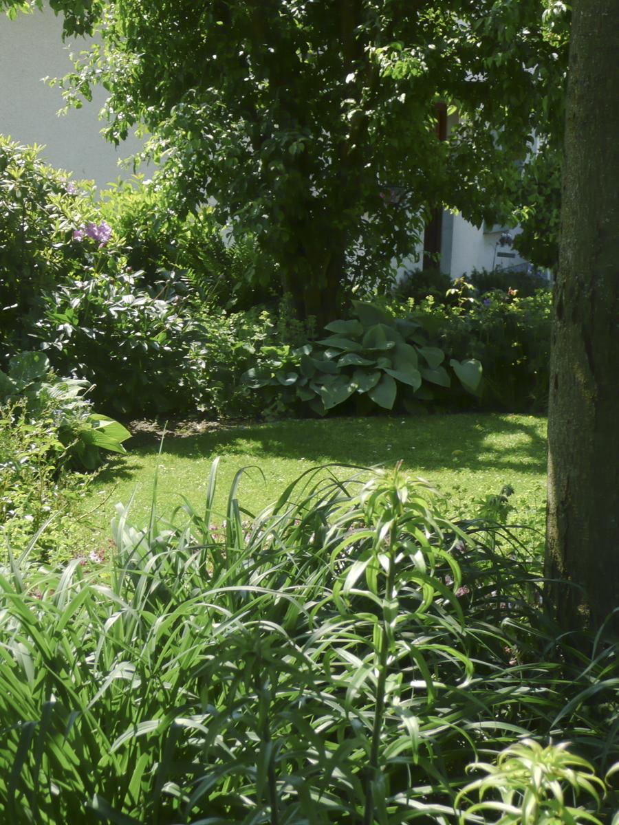 Umgestaltung Cottage Garten im Westerwald. Als Randbepflanzung blühende Staudenbeete. Gartenplanung Blum und Scherer.