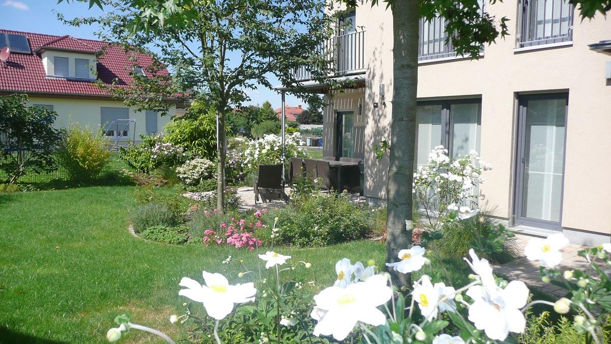Neugestaltung Familiengarten in Bruchköbel. Rasen, Terrasse und bunte Staudenbeete.