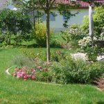 Neugestaltung Familiengarten in Bruchköbel. Bunte Staudenbeete und Rasen.