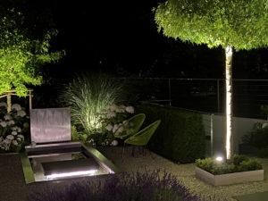 Beleuchtetes Wasserbecken aus Edelstahl und beleuchtete Dachplatanen und Eibenkissen, Edelstahl-Umrandung