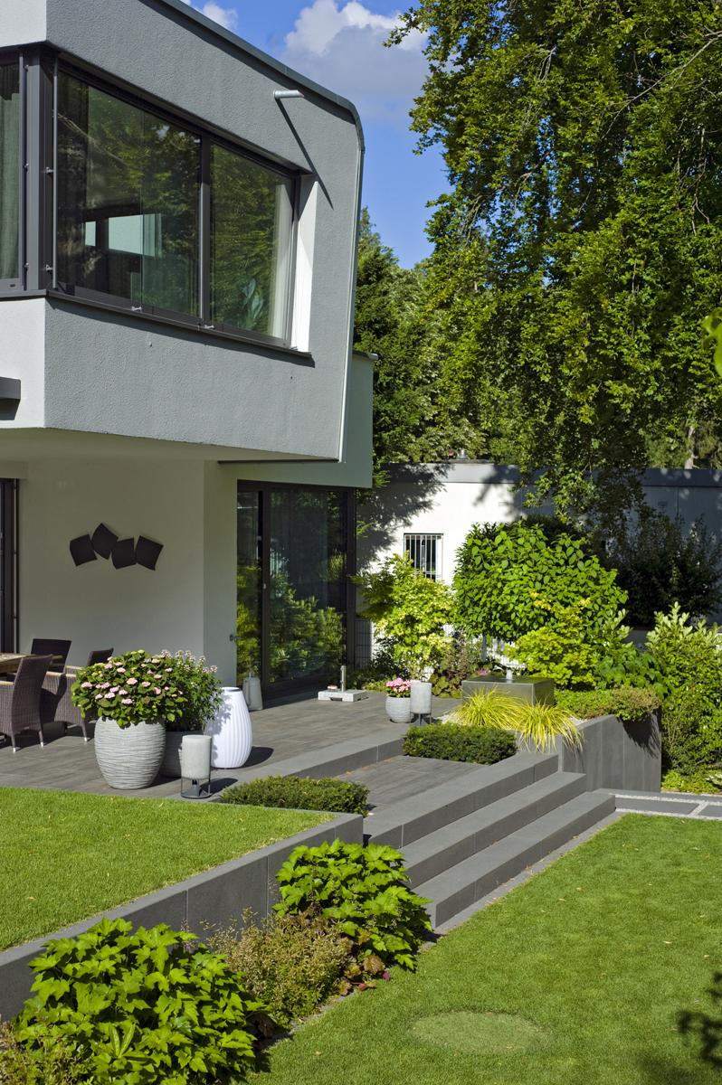Moderner Garten, Treppe zur Terrasse und Rasenfläche
